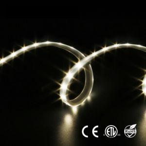 100lm/W 220V de la luz de tiras LED flexibles impermeables