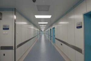 Mur de salle blanche/Panneaux de plafond pour l'intérieur Salle d'exploitation