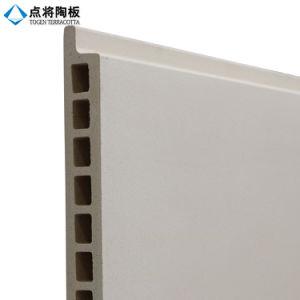 Panneau décoratif de terre cuite d'installation facile de fournisseur de Fujian pour le mur rideau
