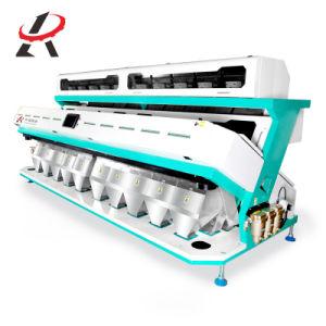 ヒマワリの種を処理するための一義的な機械