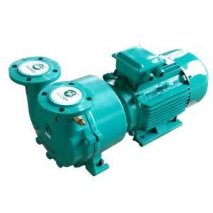 La pompe à vide anneau liquide Sk-2D 4KW de puissance du moteur