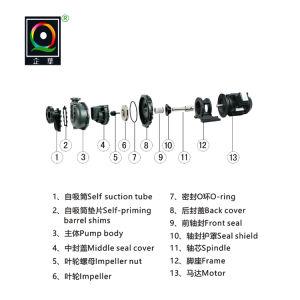 Corrosion-Resistant plaqueamento direto de fábrica da bomba Self-Priming