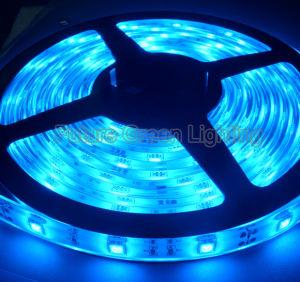 Luce di striscia del LED SMD 3528SMD/SMD 5050/SMD 2835/SMD 5630