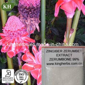 O extracto de alta qualidade Zingiber Zerumbet Zerumbone 98%