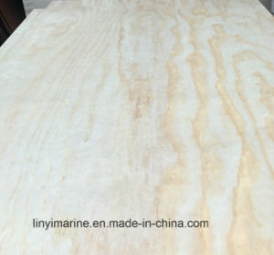 Kern van de Populier van het hout straalt de Houten Rang 21mm van het Triplex C/D van de Pijnboom uit