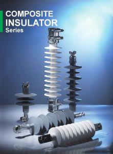 Isolateur composite de plein air à haute tension série