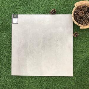 De Muur van het Bouwmateriaal van het Concept van het cement En de Ceramiektegel van de Tegel van de Vloer (CLT600)