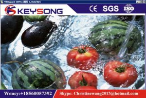 Lavadora de frutas vegetales Industrial