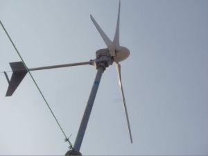 Gerador de Energia Eólica de 1000 W + 3a fibra de carbono Slient Lâminas (USD600 Somente)