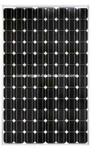 255w Monocrystalline Solar Module (SNM-M255(96))