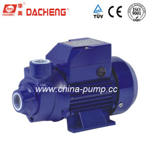 Rand Water Pump met Ce Approved (qb-60)