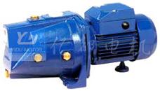 Pompa autoadescante di serie di JSP