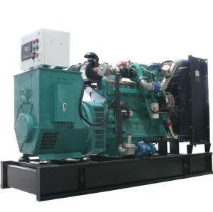 Небольшие домашние мини биогаза генератора