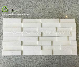 機能壁の装飾のための3Dの白いですかベージュ石灰岩の棚の石