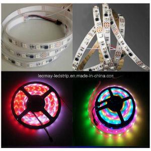 30 Magische LEIDENE van het Festival LEDs/m SMD5050 strook