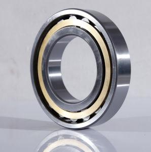 Cylindrical Roller Bearing N236em