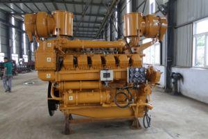 220V het eigengemaakte Gas van het Biogas Elctricalgenerator stelde Elektrische Generator 300kw in werking