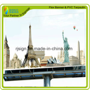 Econômico e barato Scrim Publicidade de alta qualidade Banner Flex (RJCF002)