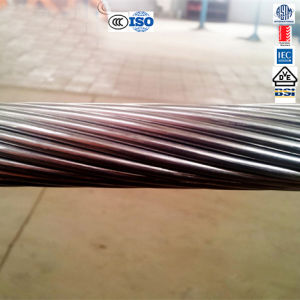 Del Henan cavo nudo del collegare elettrico ASTM 477 Mcm ACSR lassù
