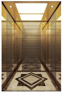 Vvvf 전송자 홈 파노라마 화물 관측 주거 엘리베이터 (16K003)