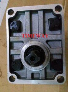 Pompa di olio ad alta pressione idraulica della pompa a ingranaggi CBN-E320-Cfhr