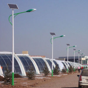 40W 8m Economical LED Solar Street Light