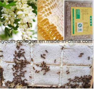 O mel, cobre o ninho do mel da acácia 100%Natural/favo de mel anticancerosos, nenhuma poluição, nenhum metal pesado, nenhuns antibióticos, nenhumas bactérias patogénicos, prolonga a vida, alimento saudável