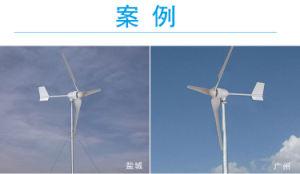 Piccolo uso 800W della casa della turbina di vento della turbina di vento del nuovo prodotto mini