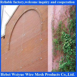 304 La corde de fils en acier inoxydable pour la décoration de maillage de câble