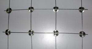 Heißer eingetauchter galvanisierter Knoten-festes Feld-Filetarbeits-Rotwild-Zaun