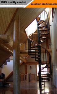 Scala esterna del cavo/fune dell'acciaio inossidabile per la decorazione