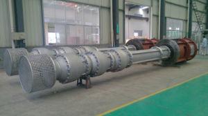 De verticale Pomp van de Turbine