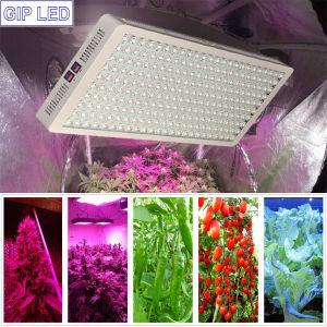Más Vendidos de Amazon 380-780nm todo el espectro de 1200W High Power LED luces crecer Gip