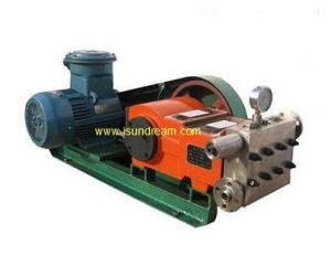 Lo stantuffo tuffante Pumpplunger /Pump è un Type di Positive Displacement Pump