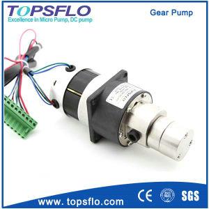 DC Mini pompe hydraulique à engrenages de pompe à engrenages