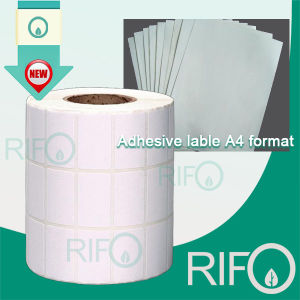 Rpm-75 de impressora jato de tinta de alta absorção de Desktop com MSDS RoHS papel