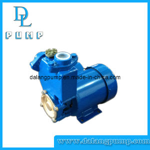 Pompa autoadescante delle acque pulite di serie di PS, pompa di superficie