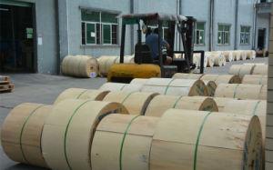 Camadas de fita de aço tubo solto GYTS de cabo de fibra óptica para exterior