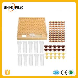 La apicultura Cupkit Celda 100 tazas Juego de herramientas de la abeja reina la cría de abejas Nicot Catcher Sistema Completo Jaula de auxiliar de la Apicultura