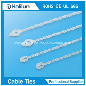 Knoten-Gleichheit-Nylonkugel-Verschluss-Gleichheit