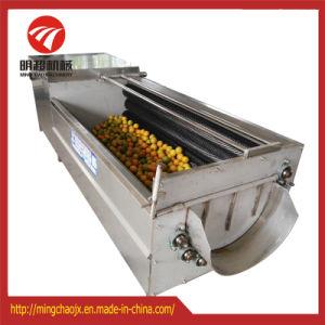 Le lavage automatique et le pelage de la machine pour la carotte Gingembre Pommes de terre