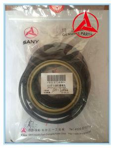 La guarnizione per l'escavatore di Sany parte il fornitore cinese
