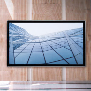 55-дюймовый Bg1000A Digital Signage Wall-Mount ЖК-дисплей отображения рекламы