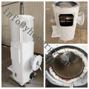 Prezzo 220V della turbina di vento di energia eolica 3kw per il laminatoio di vento
