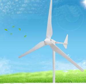 wind-Turbine-Generator der horizontalen Mittellinien-1kw Dauermagnet