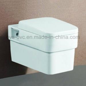 China-Hersteller Wand-Hing Toiletten-Badezimmer-Befestigungs-Hersteller