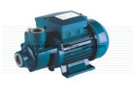 Qb 시리즈 수도 펌프 Idb 시리즈 좋은 수도 펌프 가격 인도