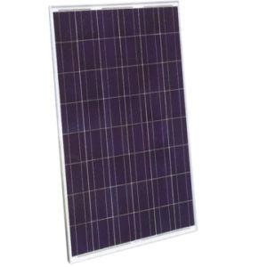 Module solaire 170W48-6 Poly (NES-170P)