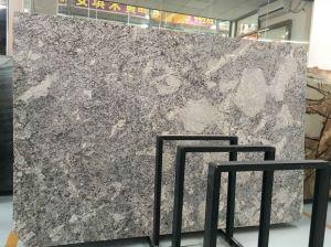 アラスカの白い花こう岩のSlabs&Tilesの花こう岩Flooring&Walling