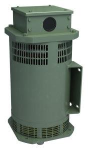 2-Pole Fahrzeug-Purpose Brushless Generatoren (Generatoren)